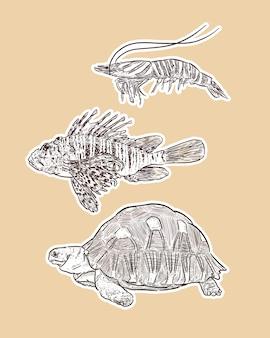 Conjunto de animal, mão desenhar desenho vetorial.