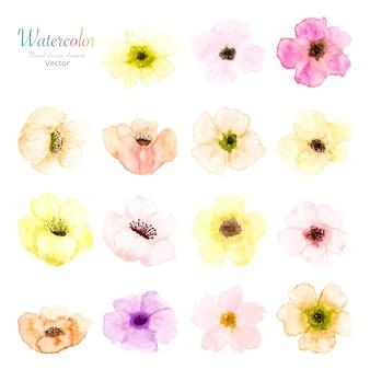 Conjunto de aquarela floral.