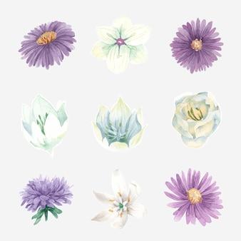 Conjunto de aquarela flores desabrochando