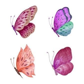Conjunto de aquarela linda borboleta desenhada à mão