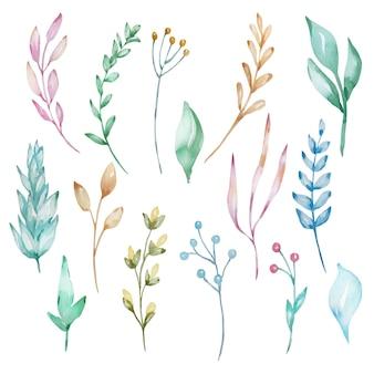 Conjunto de aquarela ramos e folhas, tons pastel.