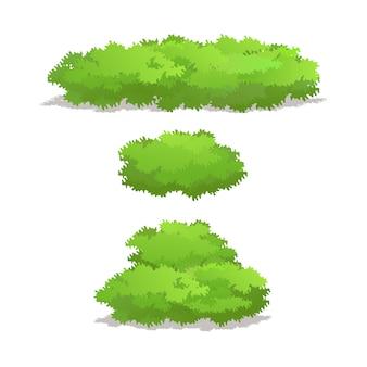 Conjunto de arbustos com várias ilustrações vetoriais em forma