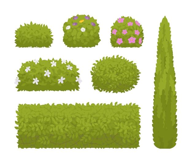Conjunto de arbustos verdes