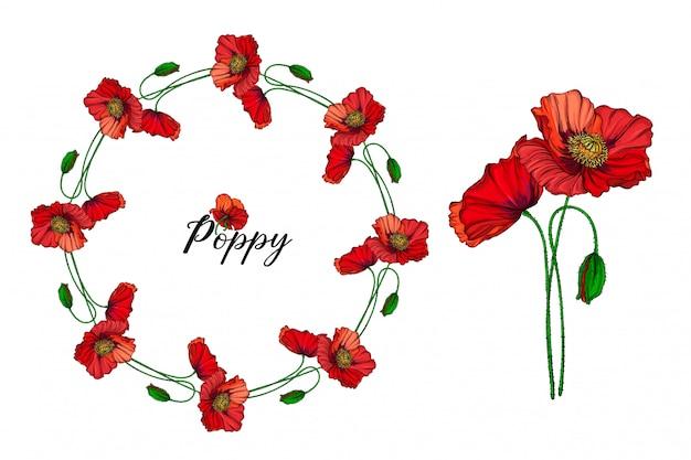 Conjunto de arranjos de flores com flores de papoula vermelhas