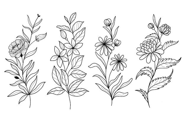 Conjunto de arte de linha de flores silvestres de doodle de folha botânica