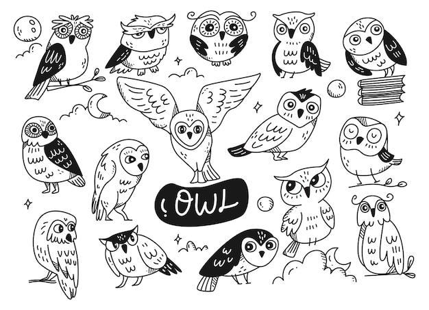 Conjunto de arte de linha doodle de coruja fofa isolado no branco