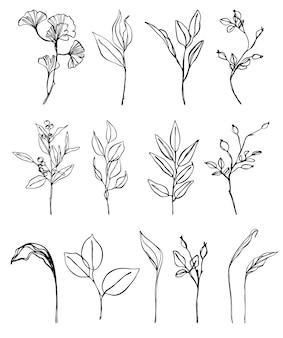 Conjunto de arte em linha de elementos florais. flores, folhas e frutos