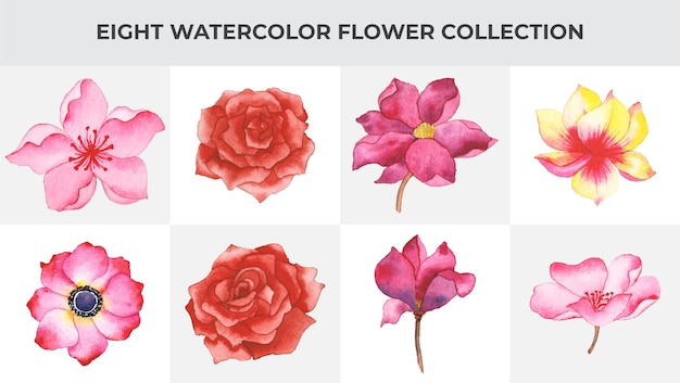 Conjunto de arte floral aquarela artesanal