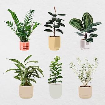 Conjunto de arte vetorial de planta, planta de casa em um vaso de flores