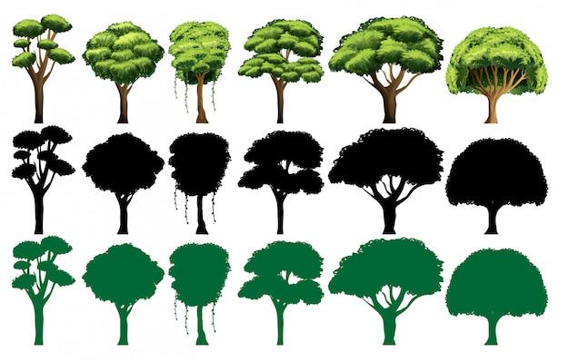 Conjunto de árvore diferente