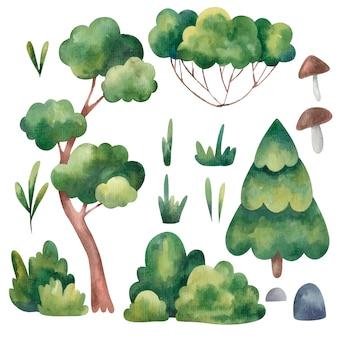 Conjunto de árvores, abeto, pinho verde, grama, pedras ilustração aquarela sobre fundo branco