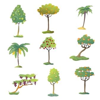 Conjunto de árvores de fruto com frutas. ilustração em fundo branco.