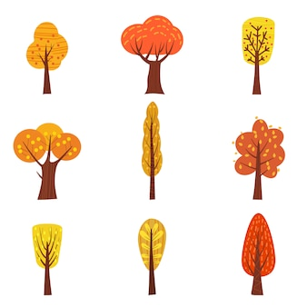 Conjunto de árvores de outono, tipos diferentes, tendência moderna