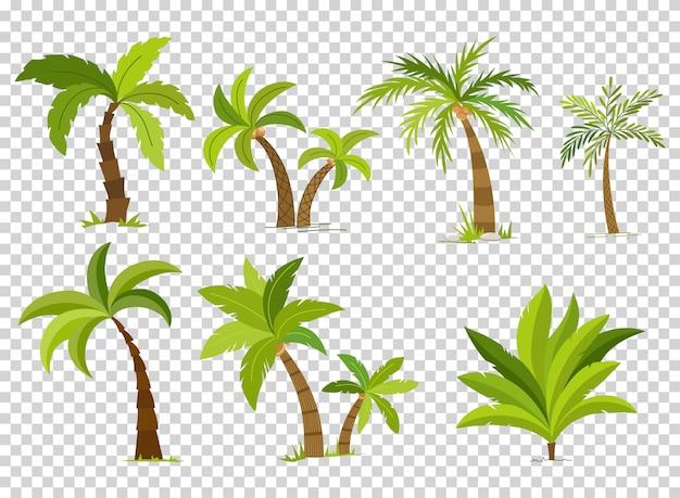 Conjunto de árvores de palma