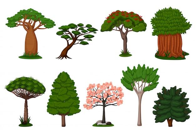 Conjunto de árvores de verão. dragão, baobá, sakura