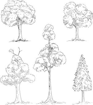 Conjunto de árvores desenhadas à mão