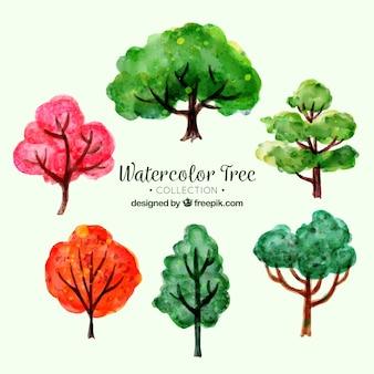 Conjunto de árvores em estilo aquarela