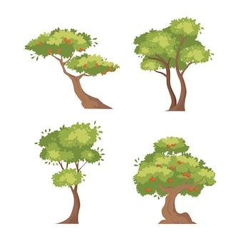 Conjunto de árvores frutíferas de bonsai, plantas verdes, coleção floral, ilustração