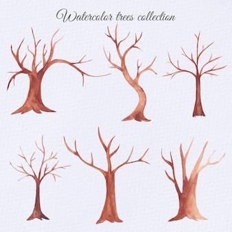 Conjunto de árvores secas em aquarela