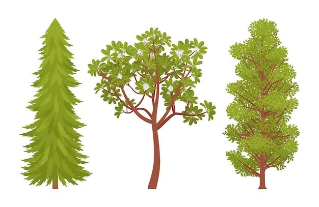 Conjunto de árvores verdes