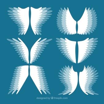 Conjunto de asas com efeito de movimento