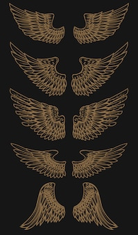 Conjunto de asas de ouro sobre fundo escuro. ilustração