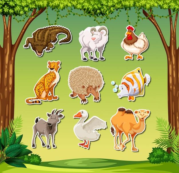 Conjunto de autocolante animal