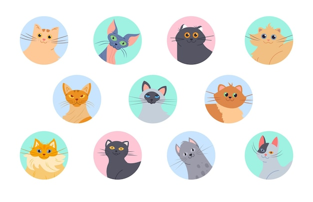 Conjunto de avatares de gatos