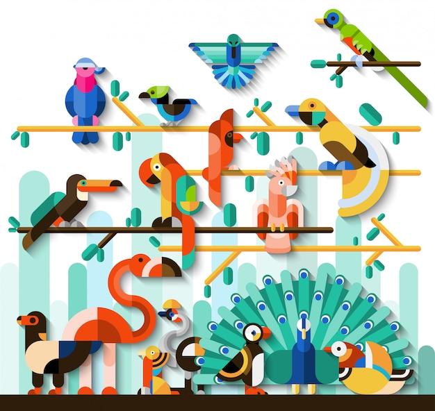 Conjunto de aves da selva