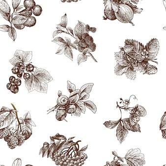 Conjunto de bagas orgânicas naturais de cranberry blackberry morango sketch ilustração em vetor padrão sem emenda