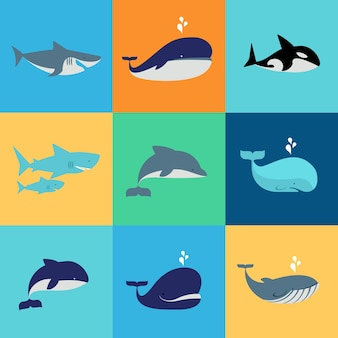 Conjunto de baleias, golfinhos e tubarões