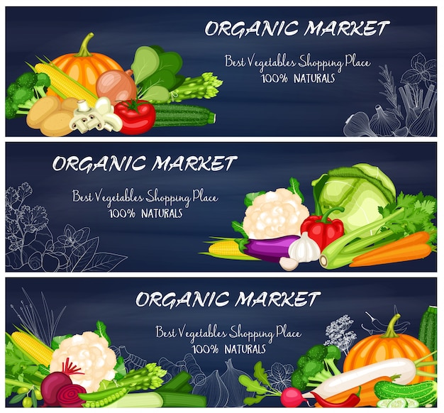 Conjunto de bandeira do mercado de vegetais orgânicos