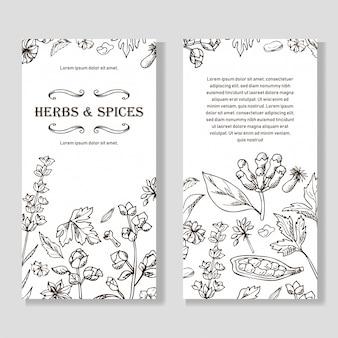 Conjunto de bandeiras de ervas e especiarias de mão desenhada