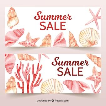 Conjunto de bandeiras de verão com conchas do mar