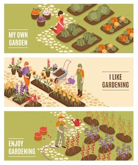 Conjunto de bandeiras isométrica de jardinagem