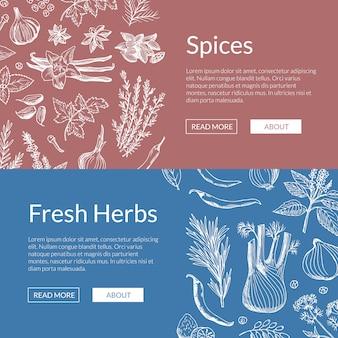 Conjunto de banner de ervas e especiarias de mão desenhada