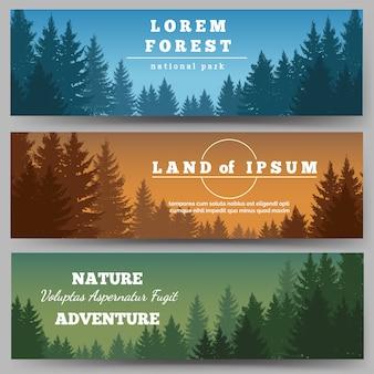 Conjunto de banner de floresta de pinheiros verdes