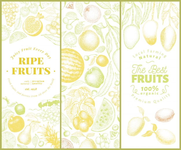 Conjunto de banner de frutas e bagas