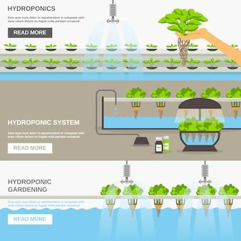 Conjunto de banner do sistema hidropônico