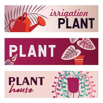 Conjunto de banners de plantas caseiras