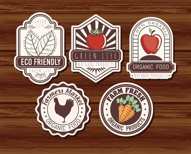 Conjunto de banners ecológicos