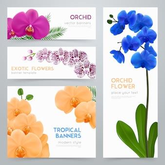 Conjunto de banners realista de orquídeas desabrochando