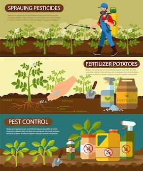 Conjunto de batatas fertilizantes e pulverização de pesticidas.