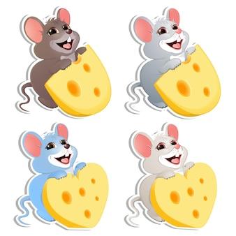 Conjunto de bebê rato com queijo