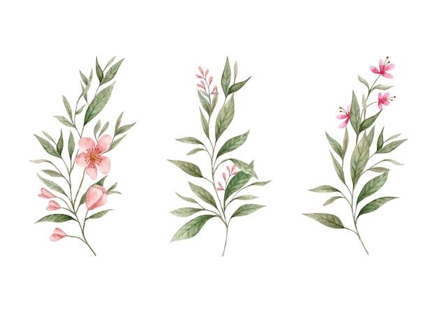 Conjunto de belas flores e folhas ramos