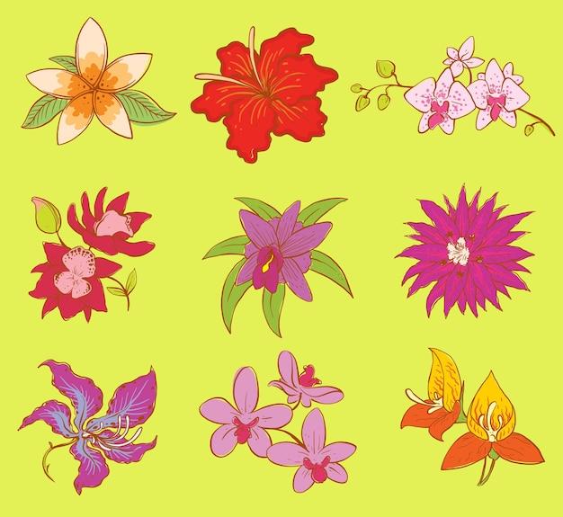 Conjunto de belas flores em aquarela.