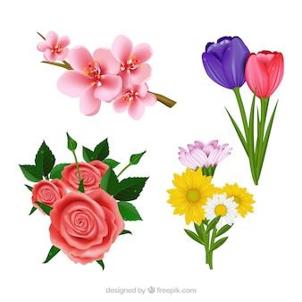 Conjunto de belas flores realistas