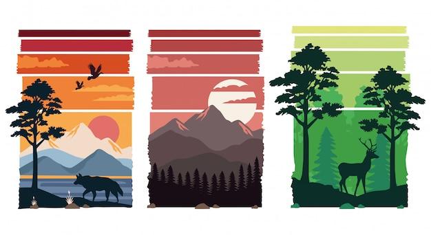 Conjunto de belas paisagens em cenas