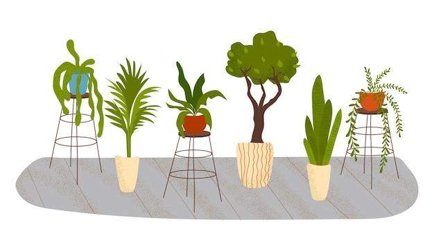 Conjunto de belas plantas de interior.