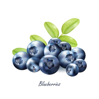 Conjunto de berryes maduros realistas sobre um fundo branco.